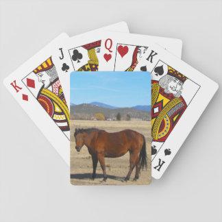 Baralho Cartões de jogo do cavalo