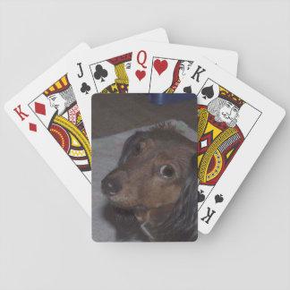 Baralho Cartões de jogo do Dachshund