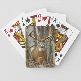 Baralho Cartões de jogo dos cervos do fanfarrão