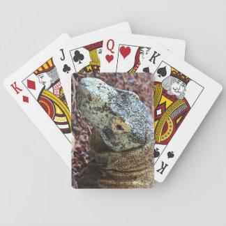 Baralho Cartões do dragão de Komodo