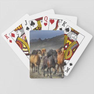 Baralho Cavalos em um tiro