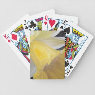 Baralho Daffodil amarelo