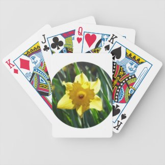 Baralho Daffodil amarelo 02.2_rd