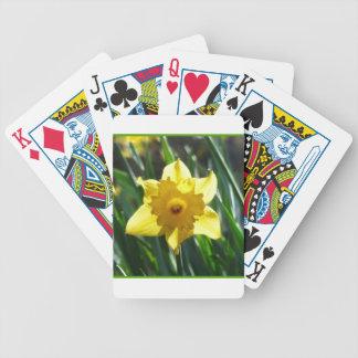 Baralho Daffodil amarelo 03.0.g