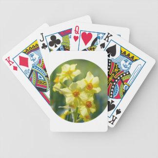 Baralho Daffodils bonito, narciso 03.2_rd