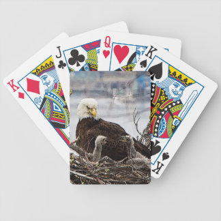 Baralho De Truco Águia americana com eaglets