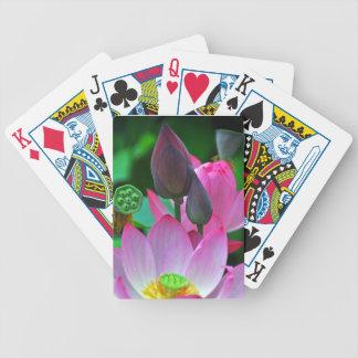 Baralho De Truco Flores cor-de-rosa de Lotus