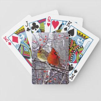 Baralho Floresta cardinal