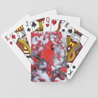 Baralho Homem cardinal do norte, inverno, IL