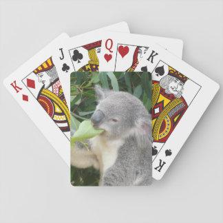 Baralho Koala que come a folha da goma