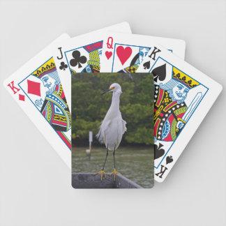 Baralho Para Poker Determinação orgulhosa