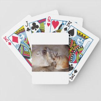 Baralho Para Poker Escudos