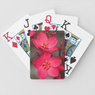 Baralho Para Poker Flores tropicais vermelhas e cor-de-rosa de Fiji