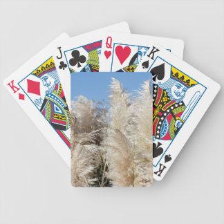 Baralho Para Poker Grama de Pampas com um céu azul ensolarado