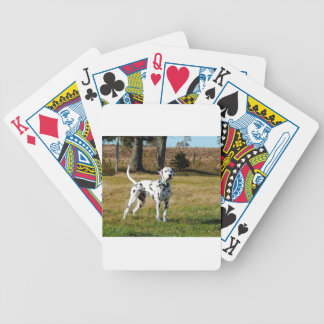 Baralho Para Poker Kevin o Dalmatian