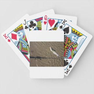 Baralho Para Poker Peixe-gato de Missouri