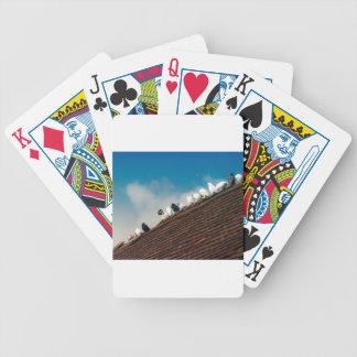 Baralho Para Poker Pombos
