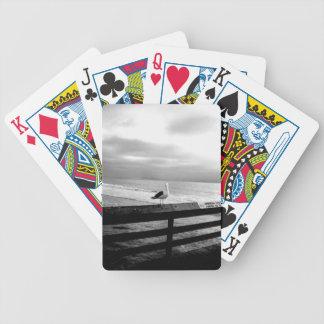 Baralho Para Poker Que você está olhando?