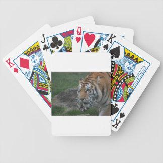 Baralho Para Poker tigre