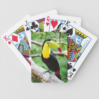 Baralho Para Poker Toucan bonito