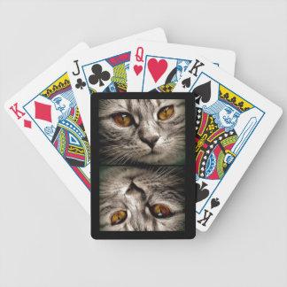 Baralho Para Pôquer Brown Eyed o gato de tigre cinzento