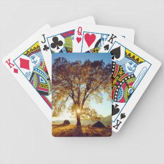 Baralho Para Pôquer Floresta nacional preta dos carvalhos | Cleveland,