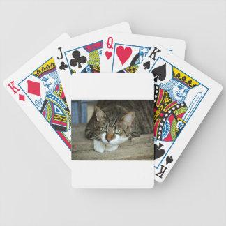 Baralho Para Pôquer Os olhos de gato