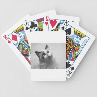 Baralho Para Pôquer Retrato preto e branco do gatinho