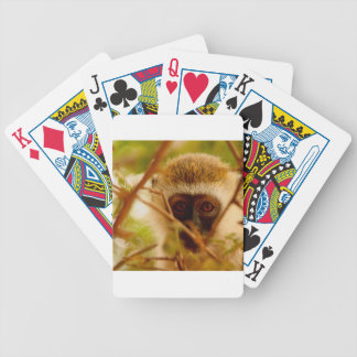 Baralho Para Truco Macaco insolente