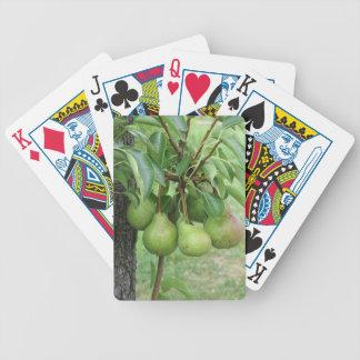 Baralho Peras verdes que penduram em uma árvore de pera