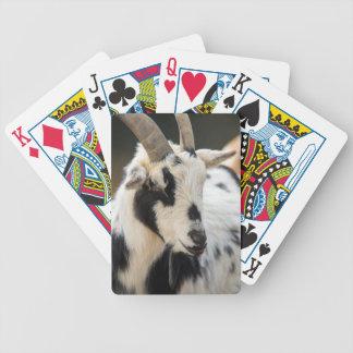 Baralho Retrato da cabra