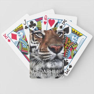 Baralho Tigre de Cedarhill