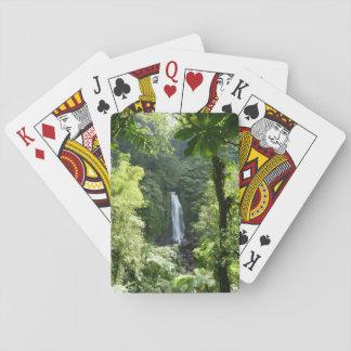 Baralho Trafalgar cai fotografia tropical da floresta