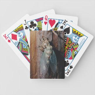 Baralhos De Poker A cigarra seca suas asas