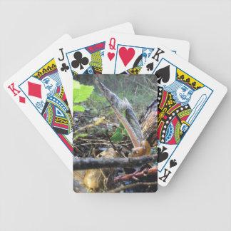 Baralhos De Poker A língua Sproutling do cão