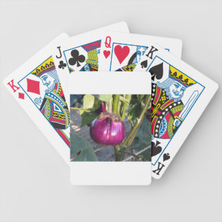 Baralhos De Poker Beringela redonda roxa que pendura na árvore