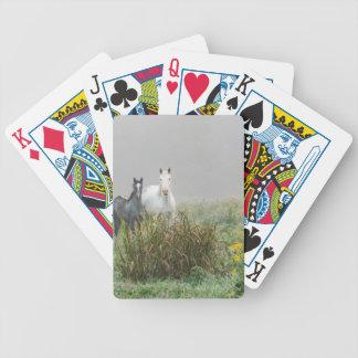 Baralhos De Poker Cavalos selvagens de Missouri