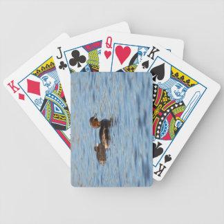 Baralhos De Poker Grebe pequeno e pintinho