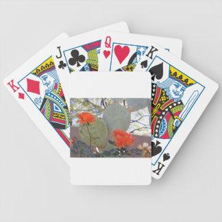 Baralhos De Poker O cacto aumentou