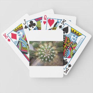 Baralhos De Poker Parte superior do cacto