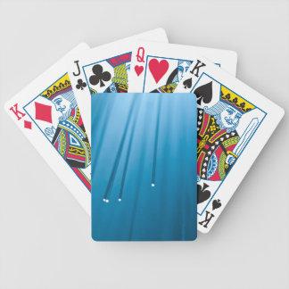 Baralhos De Poker Sumário da fibra óptica