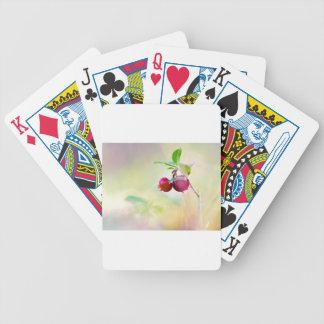 Baralhos De Poker Tiro macro da airela que cresce na floresta