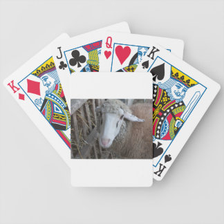 Baralhos De Pôquer Carneiros com feno