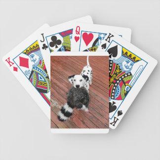 Baralhos De Pôquer Kevin o Dalmatian