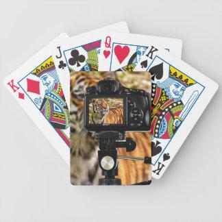 Baralhos De Pôquer Tigre da listra na sessão fotográfica