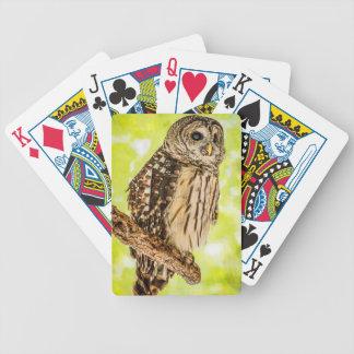 Baralhos Para Poker Cartões de jogo da coruja