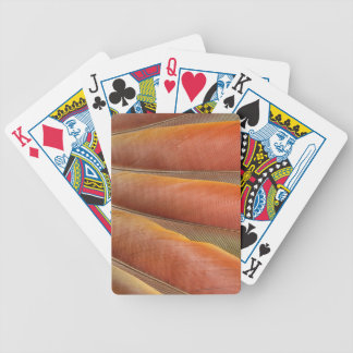 Baralhos Para Poker Escarlate das penas Vermelho-Alaranjadas do Macaw