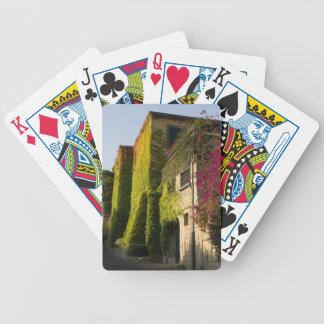 Baralhos Para Poker Folhas coloridas em paredes da casa