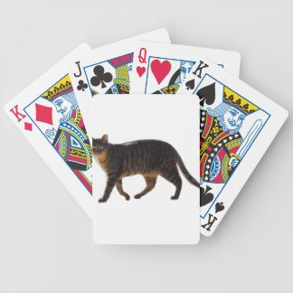 Baralhos Para Poker Gato de passeio 201711j