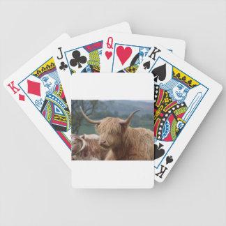 Baralhos Para Poker retrato do gado das montanhas